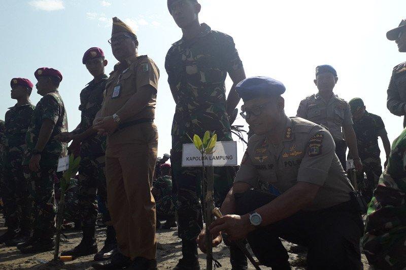 300.74 bibit mangrove ditanam serentak pada puncak HUT TNI