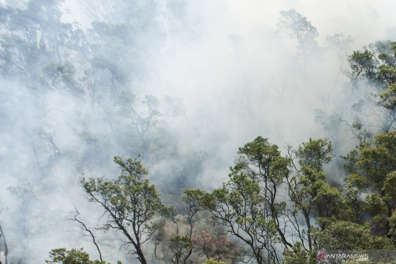 Kebakaran lahan Kawah Putih mulai padam