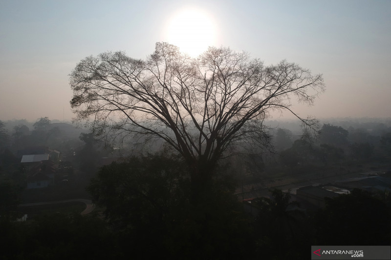 Kabut asap masih selimuti Jambi