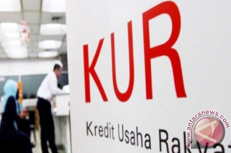Bank Nagari Padang Pariaman salurkan KUR Rp40 miliar