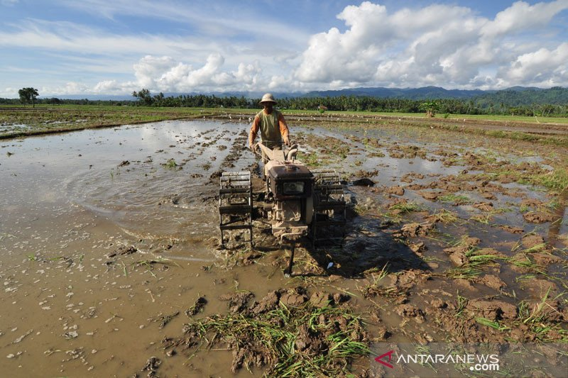 187 petani di Parigi Moutong dilibatkan untuk cetak sawah baru