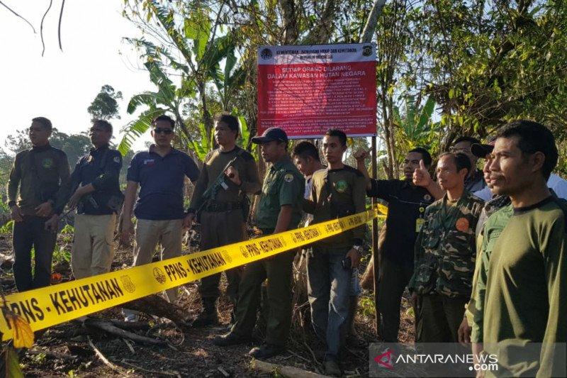 Polhut mengungkap kasus perambahan 12 hektare lahan Tahura Nuraksa