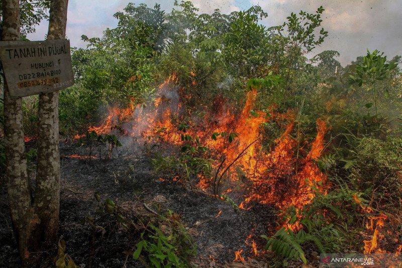 Efektif berantas karhutla, Gubernur Riau minati inovasi milik polda