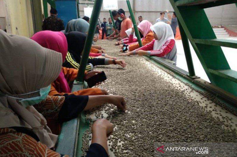 Meski pandemi, Menkop catat ekspor kopi Indonesia masih tumbuh