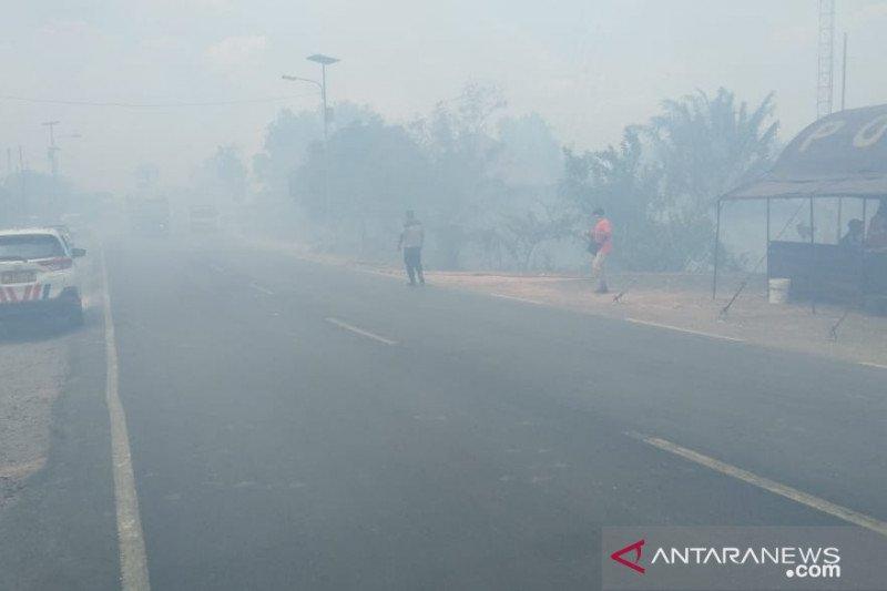 Masyarakat Mesuji  keluhkan kabut asap