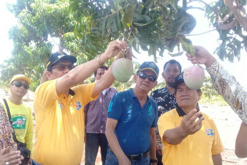 Indramayu resmikan Agro Wisata Situ Bolang di Jatisura