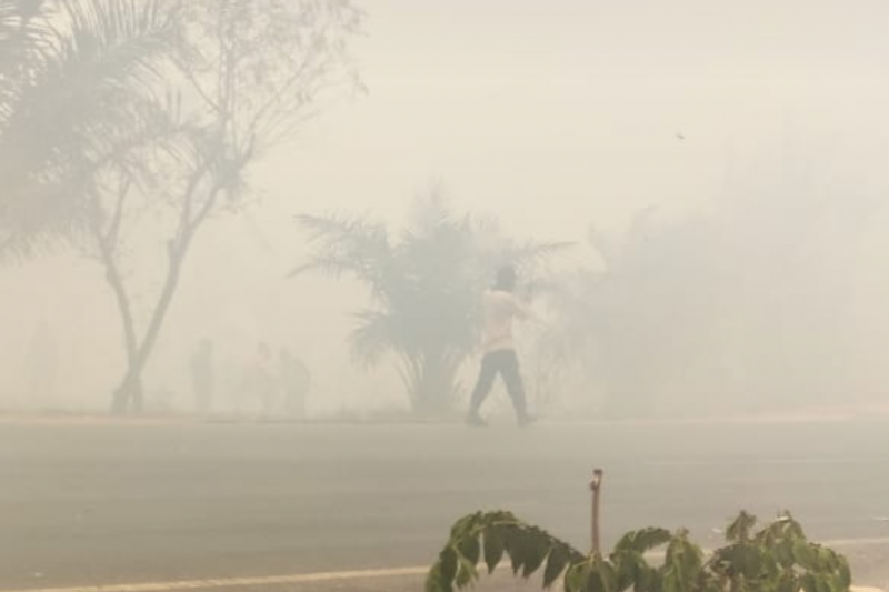 Kabut asap akibat karhutla landa wilayah Mesuji