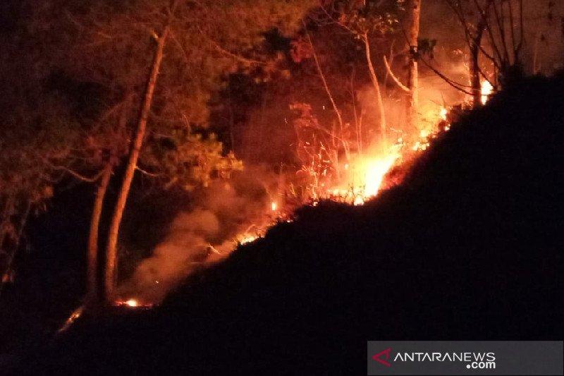 Hutan kawasan Perhutani di Cikuray Garut masih terbakar
