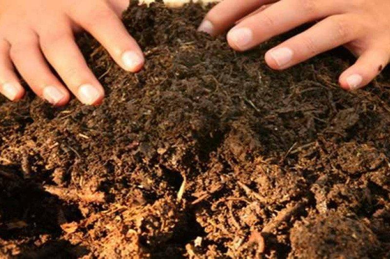 DLH Ogan Komering Ulu  olah sampah menjadi pupuk kompos
