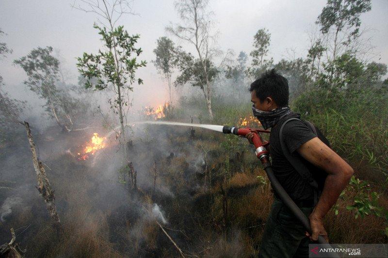 Pangdam : Satgas Karhutla tidur di rumah warga