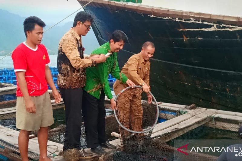 Sumbar ekspor 36,3 ton ikan kerapu ke Hong Kong
