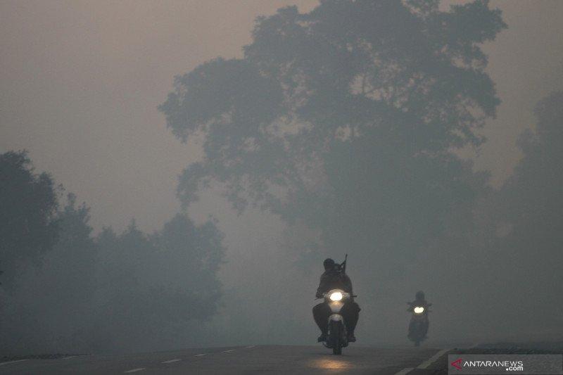Kabut asap bisa  diminimalkan dengan aquascape dan tanaman