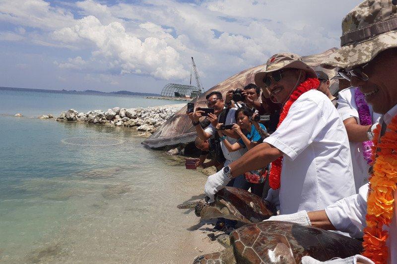 Menpar lepas liar penyu di Pulau Pengelap