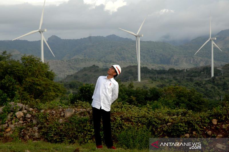 Ekonomi hijau ala Jokowi di tengah pandemi