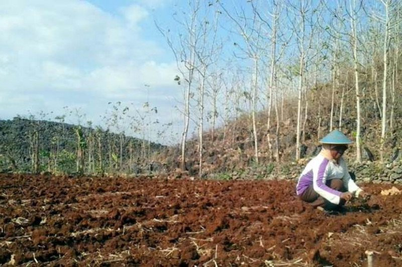 Musim tanam sudah dekat, petani diminta siapkan lahan