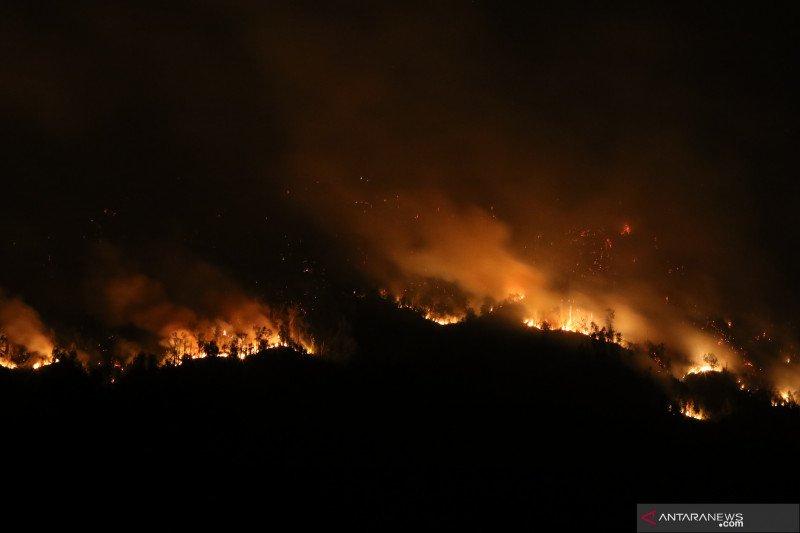 Kebakaran Gunung Merapi Ungup Ungup Antara News Kuala Lumpur
