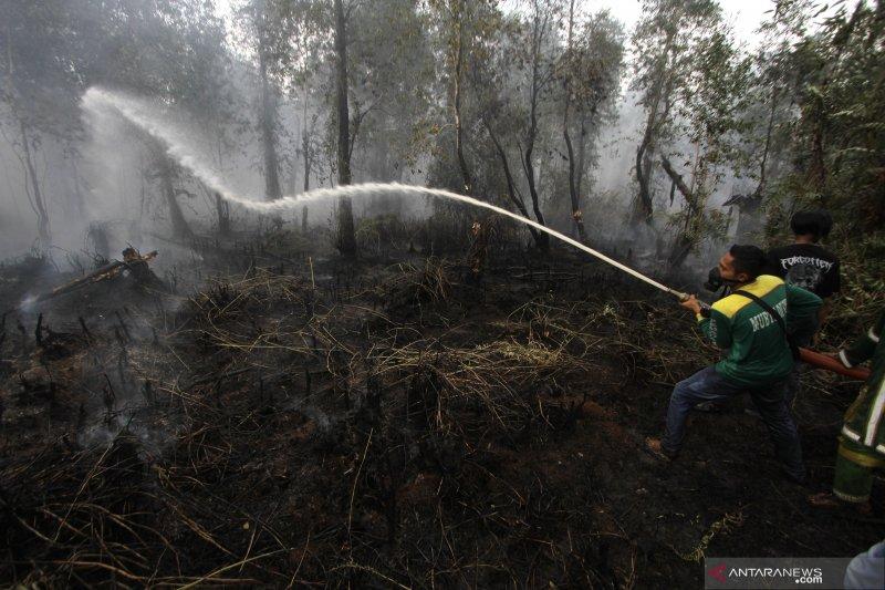Karhutla masih terjadi di Kalimantan Selatan