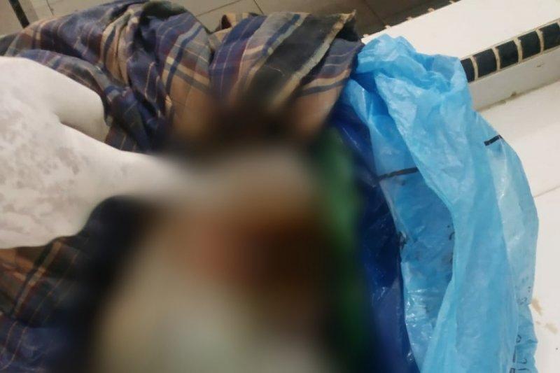 Diduga hasil hubungan gelap, mayat bayi ditemukan dalam karung goni yang dihinggapi lalat