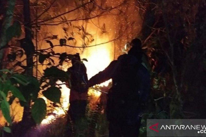 Penyebab kebakaran hutan di Gunung Bawakaraeng belum diketahui