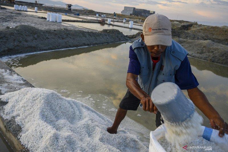 Distribusi pupuk subsidi di Sulteng harus diawasi ketat
