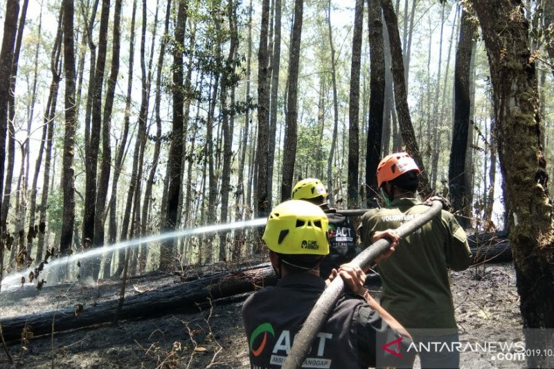 Kebakaran hutan di Gowa mulai padam