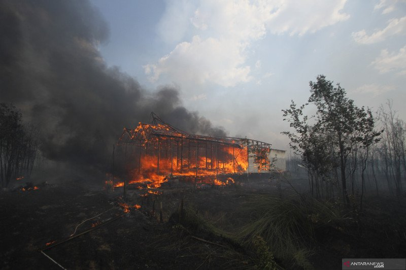 Sejumlah rumah di Banjar terbakar akibat karhutla