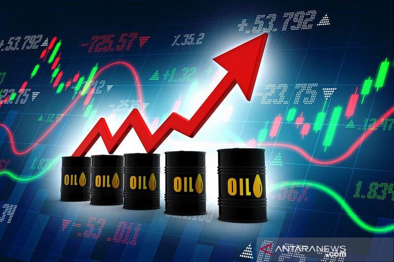 Harga minyak global naik didorong data ekonomi positif