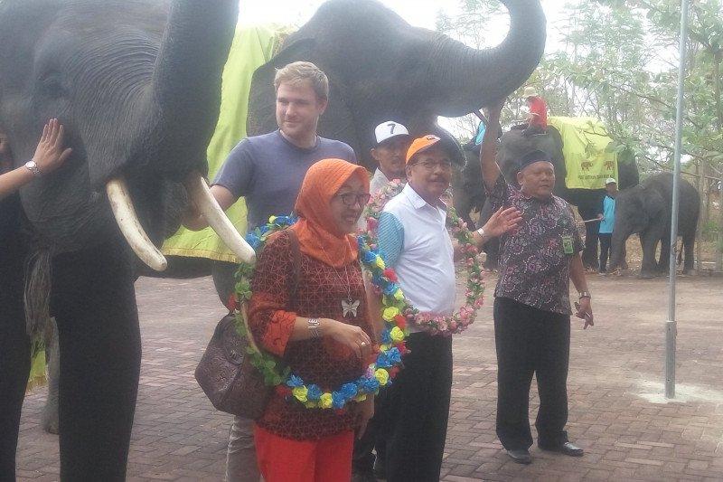 Isi liburan akhir pekan, Menteri ATR kunjungi Way Kambas Lampung
