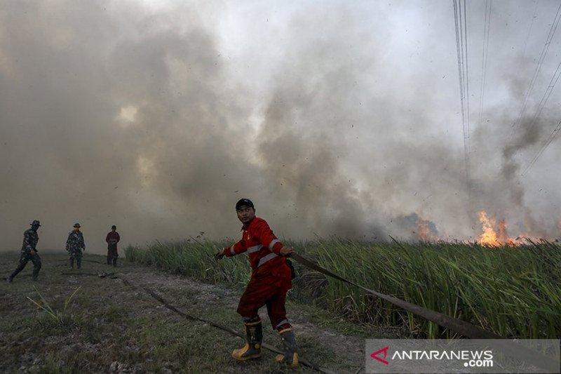 Besok, tak ada lagi status siaga darurat karhutla di Riau