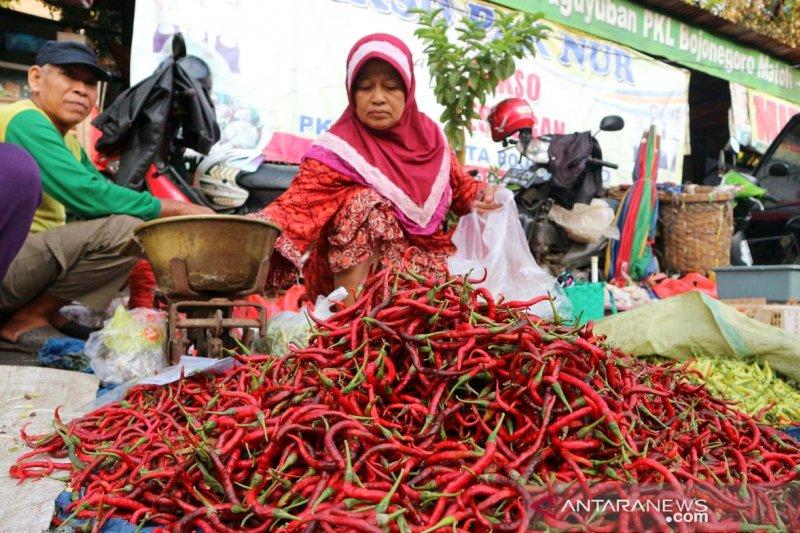 Harga cabai merah keriting Baturaja turun  jadi Rp24.000 per kilogram