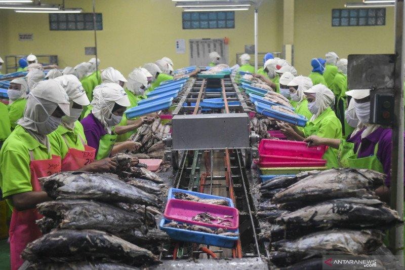 KKP: China mendominasi investasi kelautan dan perikanan di Indonesia