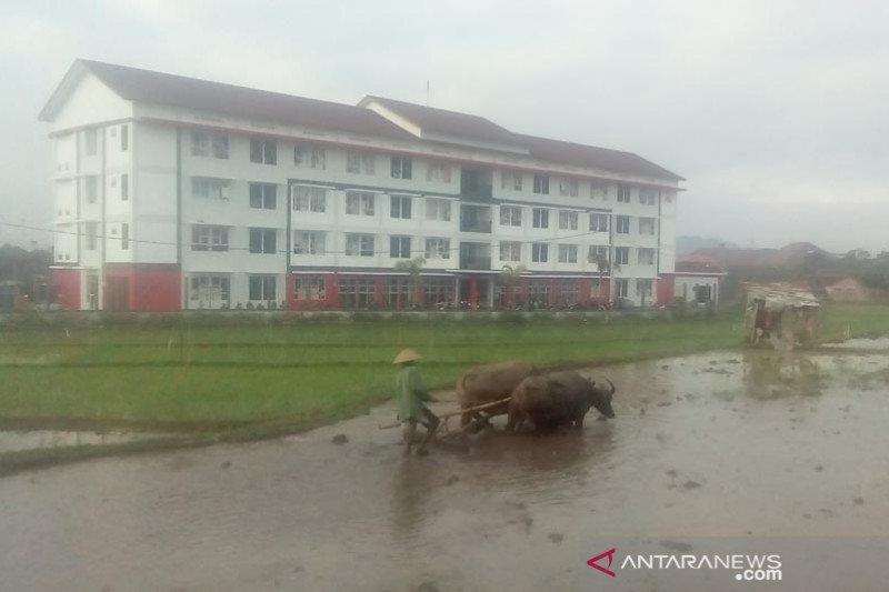 Telaah - Kota Magelang etalase produk pertanian