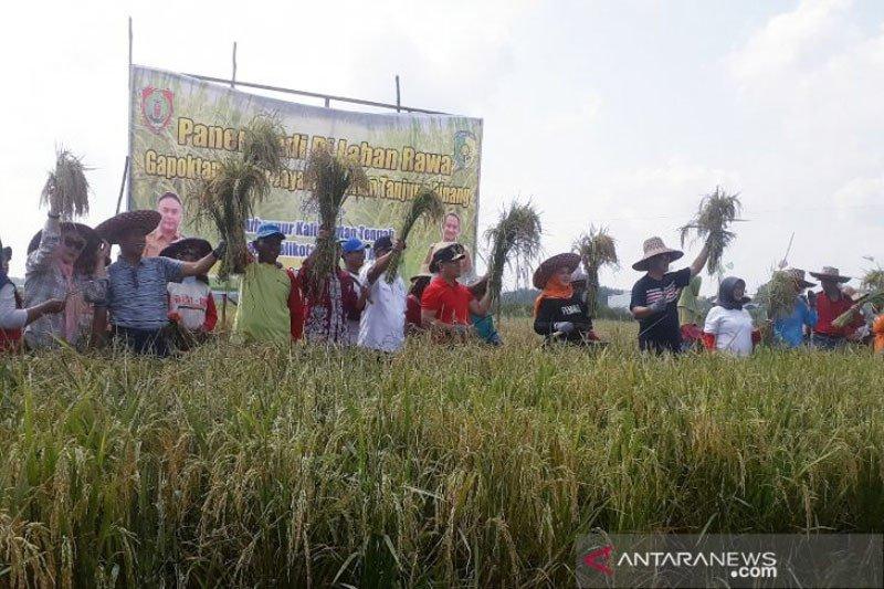 Pencetakan sawah baru di Kalteng dapat picu masalah lingkungan hidup