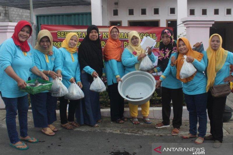 Manfaatkan lahan sempit, KWT Kota Magelang budidayakan lele berkelanjutan