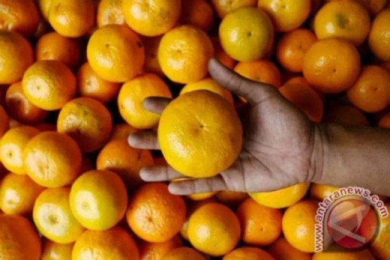 Pilihan buah jaga kebugaran musim hujan