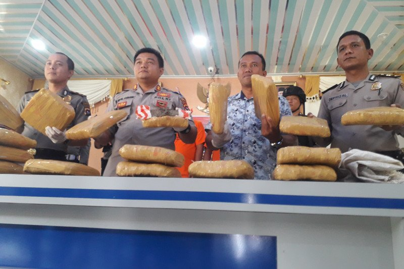 Dua pengedar 17 kilogram ganja asal Panyabungan Sumut dibekuk di Pasaman Barat