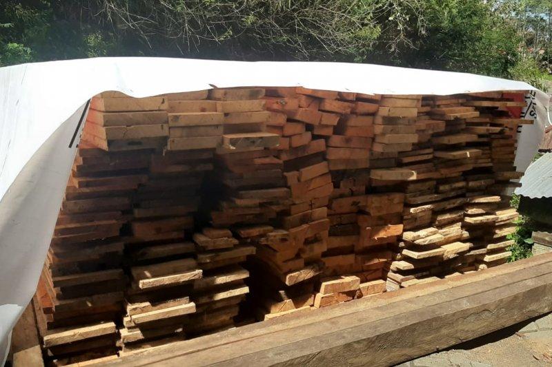 Kayu ilegal logging diamankan di Minahasa Tenggara