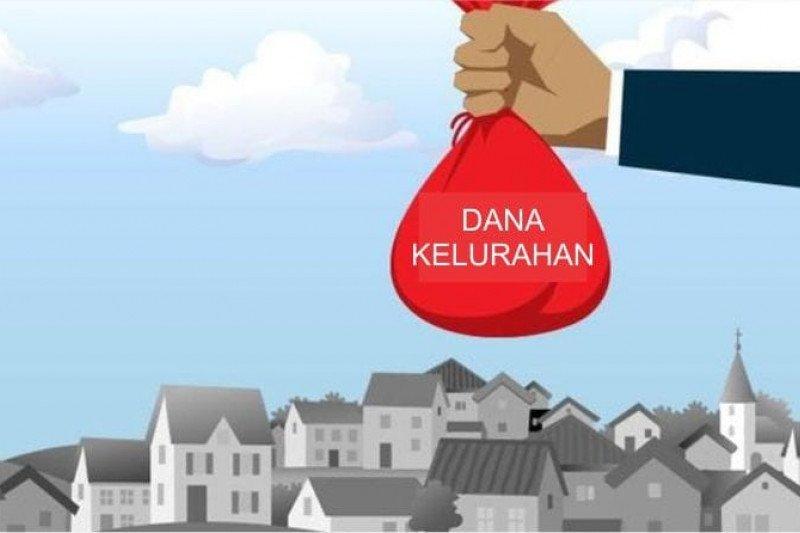 Pemerintah Kelurahan Saung Naga optimalkan  penggunaan dana kelurahan