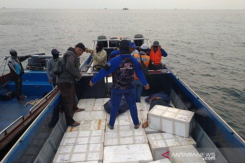 LSM tolak wacana membuka kembali ekspor benih lobster
