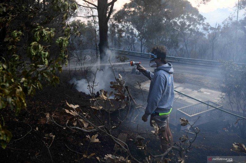 Dua tewas dan 100 rumah hancur akibat kebakaran hutan di Australia