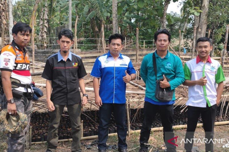 LLH Jejak Ogan Komering Ulu  siapkan 500.000 bibit pohon produktif