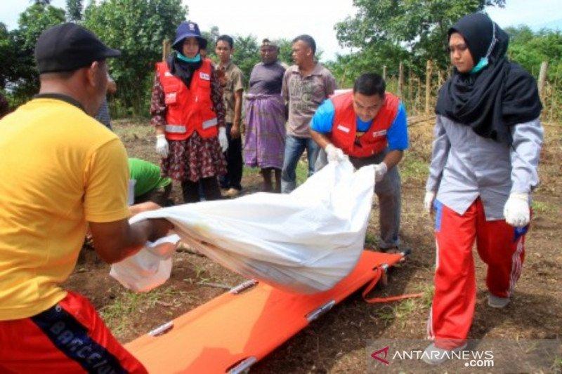 PMI evakuasi kerangka manusia diduga korban tsunami