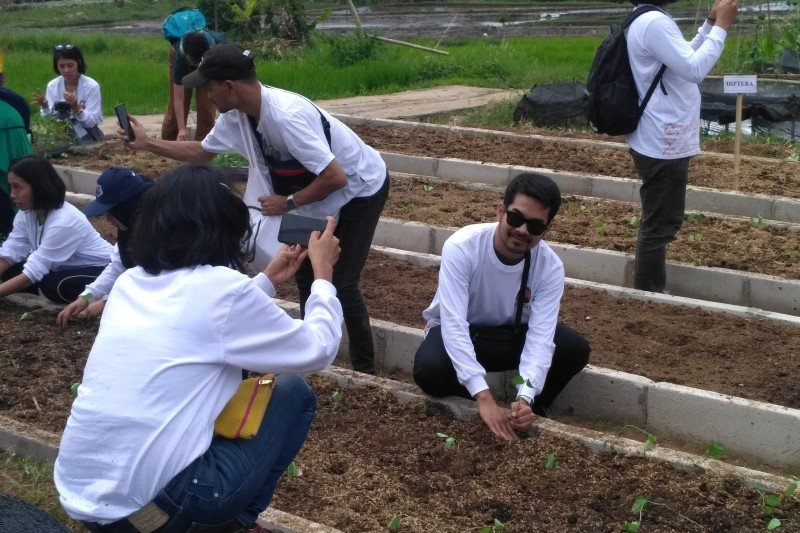 Swasta bersama LSM The Learning Farm Cianjur telah cetak ribuan  petani muda