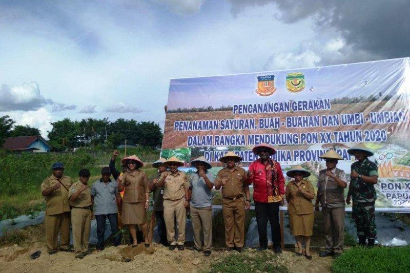 TNI dukung Pemkab Mimika dalam program pembangunan pertanian