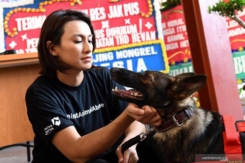 Apresiasi pengusutan kasus penyiksaan anjing