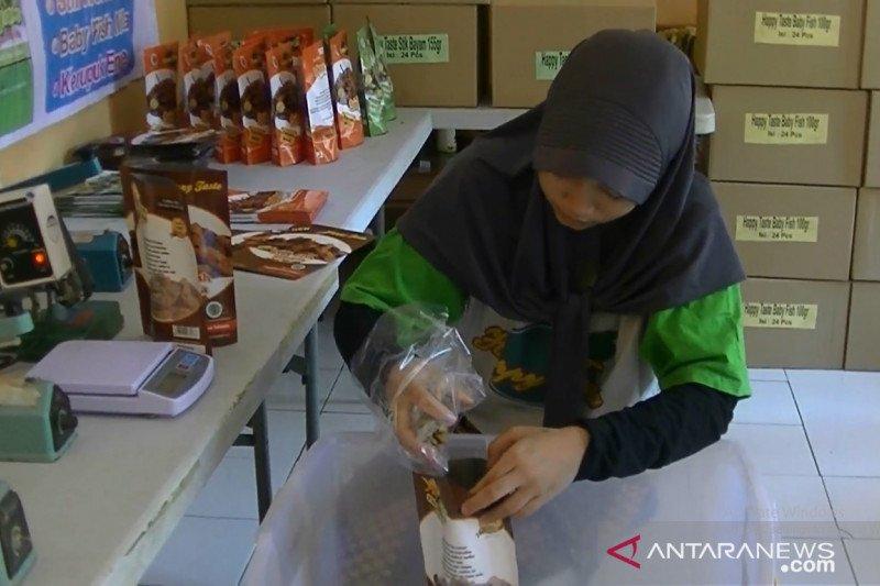 Kaum milenial di Sukabumi didorong manfaatkan peluang bisnis daerah