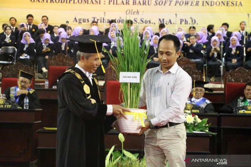 Golden Rice, varietas padi baru milik Universitas Jember