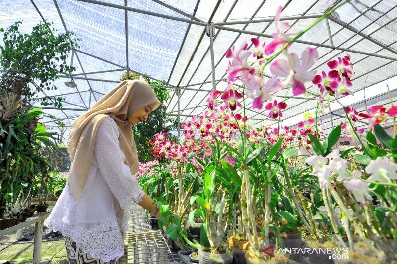 Taman Anggrek Menyemarakkan Eks Lokalisasi Sememi Di Surabaya