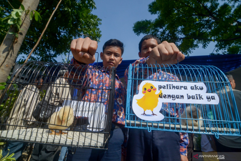 Cegah siswa kecanduan gawai, Pemkot Bandung bagikan anak ayam