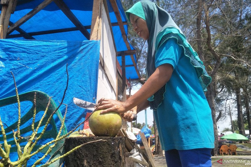 Pedagang kelapa muda tersenyum selama Pariaman Internasional Triathlon